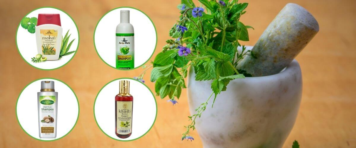 Best Herbal Shampoo in Pakistan - Price in Pakistan